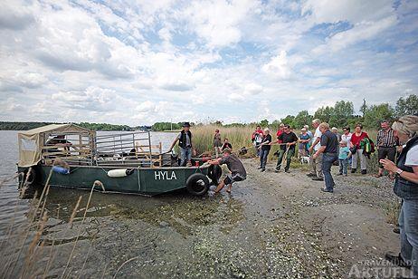 Die Schafherde für die neue Uferwiese reiste per Boot an. Fotos: <b>KARL ERHARD VÖGELE</b>