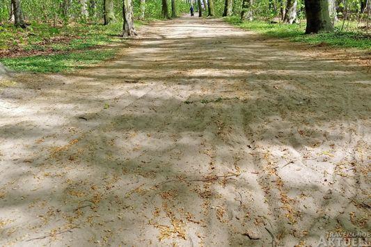 Im tiefen Sand können Räder leicht ins Schlingern kommen, wie die Spuren zeigen. Fotos: <b>MM</b>